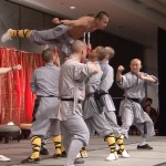 The Martial Arts Show